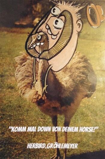Komm mal down von deinem Horse!